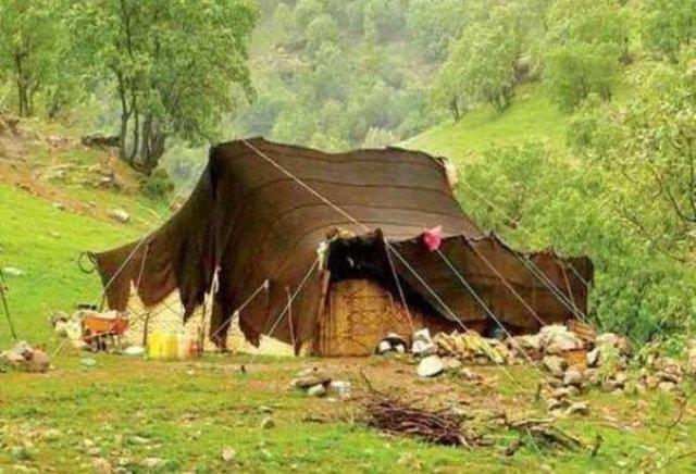 انتقاد قوامی از تحویل چادرهای برزنتی به عشایر خراسان شمالی