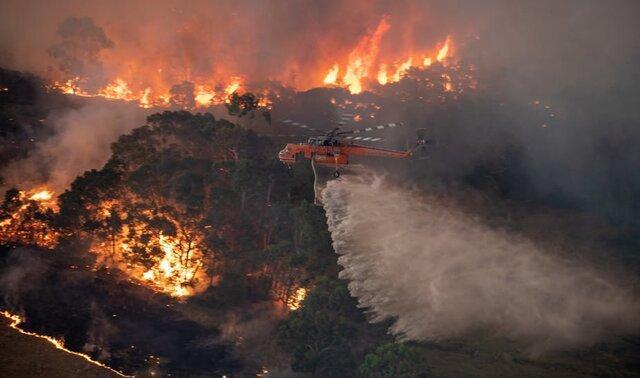 آتش سوزی های جنگلی استرالیا تصویری از آینده زمین
