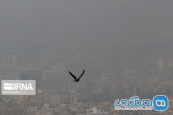 آلودگی هوا سبب افزایش ابتلا به کرونا می گردد