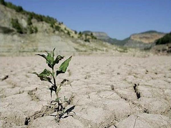 خبرنگاران رییس جهادکشاورزی: خشکسالی در لرستان تهدید جدی است