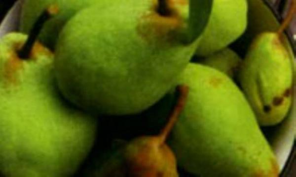 گلابی، میوه شادابی